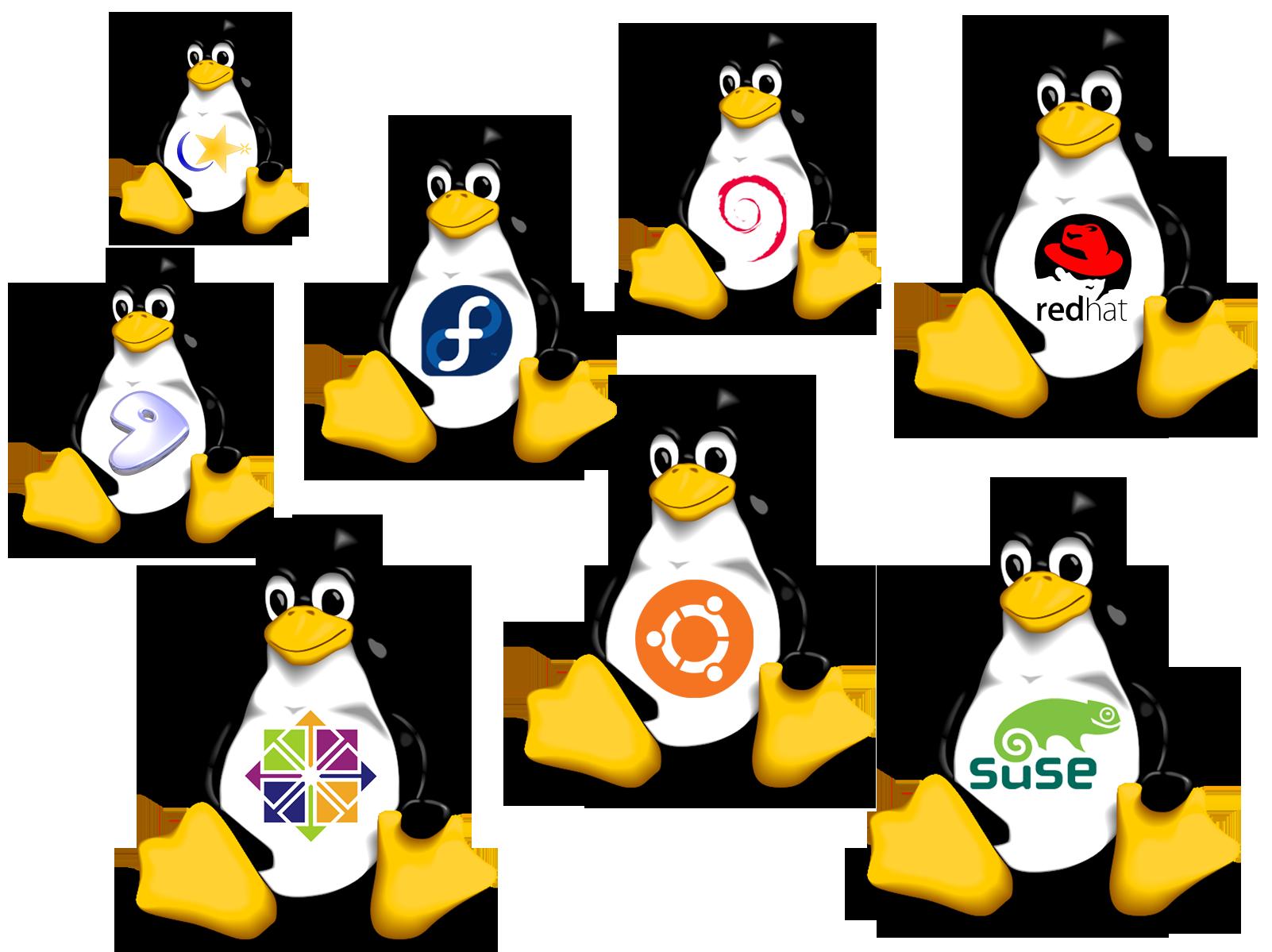 Portatili GNU/Linux compliant, ecco alcune soluzioni