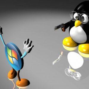 Da Windows a Linux: semplici passi per un'installazione sicura